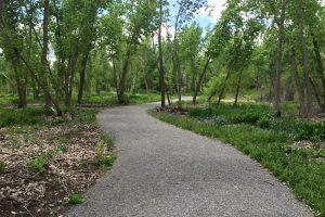 Local Trails